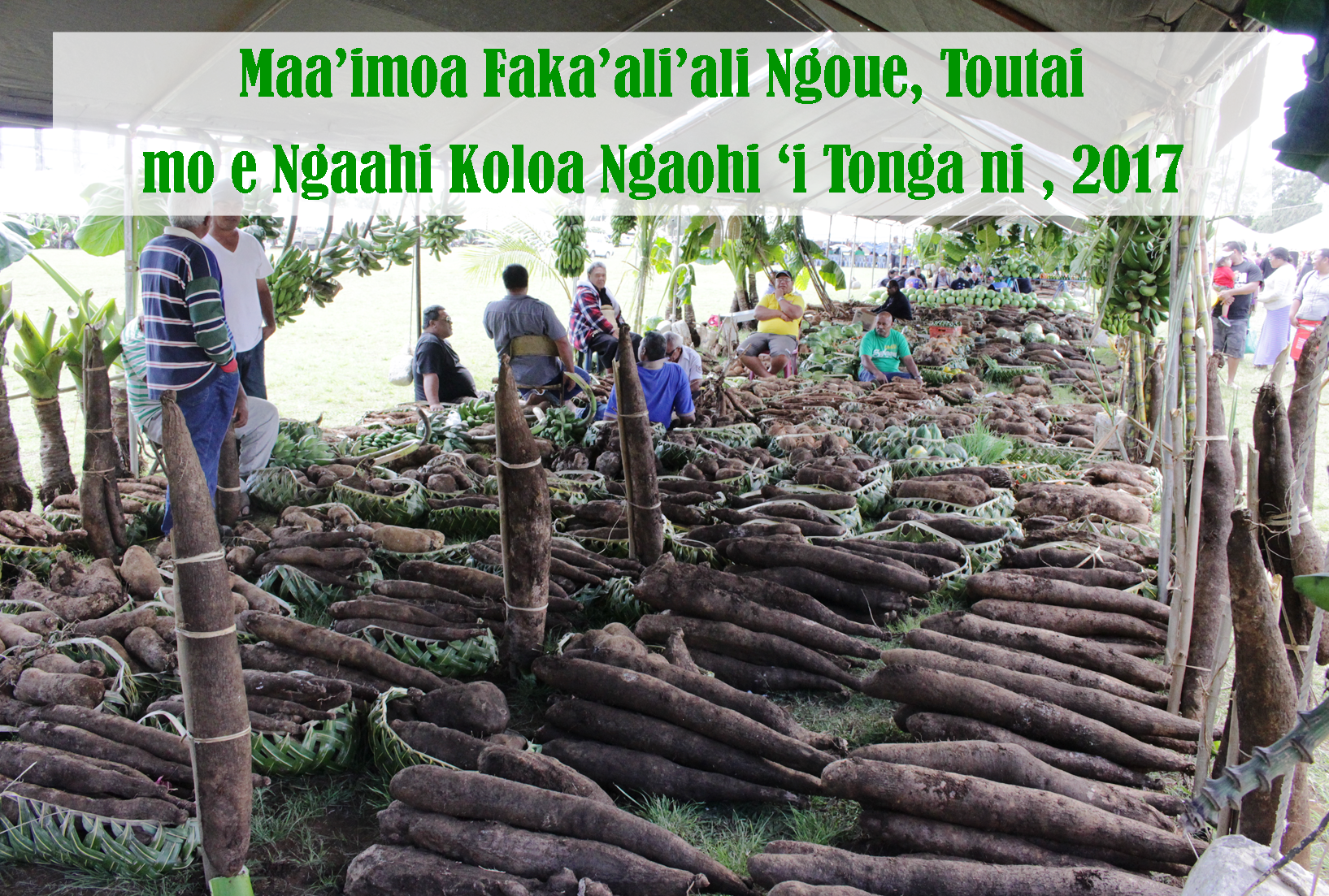 slide1_rootcrops